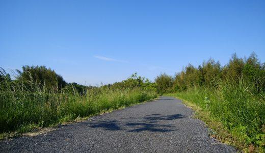 朝散歩の良い点と留意点
